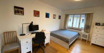 Helle 2-Zimmer Wohnung im schönen Seefeld (Kreis 8)